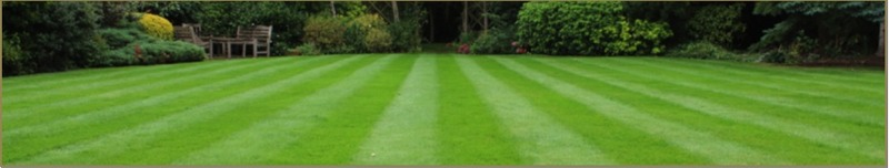 wirral gardener maintenance